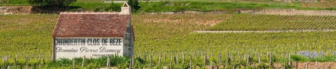Bourgogne Wijn
