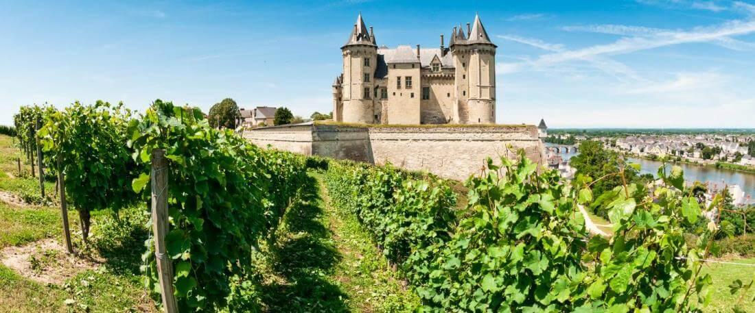 Loire wijngaard kasteel
