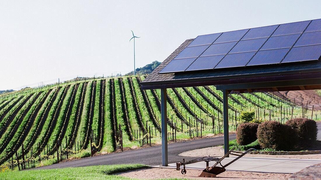 Torres wijn milieu